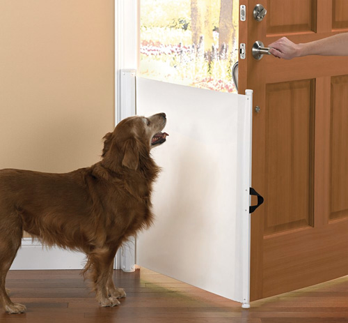 The Dog Escape Preventer (Image courtesy Hammacher Schlemmer)