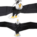 RC Bald Eagle With An Almost 10 Foot Wingspan