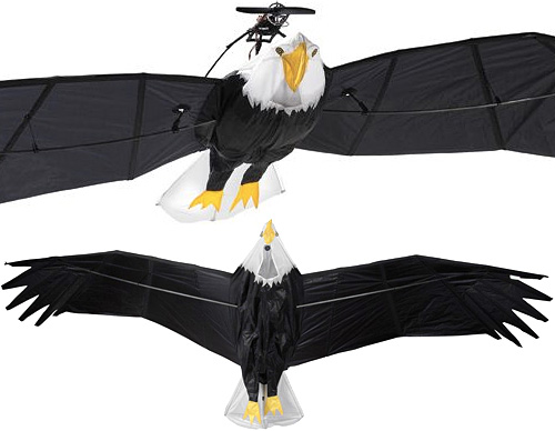 RC Bald Eagle (Images courtesy Hammacher Schlemmer)