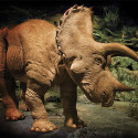 I Might Not Have A Need For A 20-Foot, $350,000 Animatronic Triceratops Now, But Who Knows What The Future Holds?