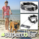 Super Collar Provides An Always-On Leash