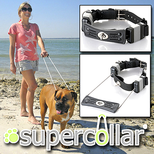 Super Collar (Image courtesy Taylor Gifts)