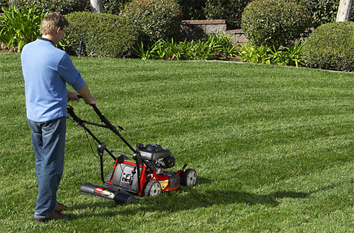 Toro's Lawn Striping System (Image courtesy Toro)
