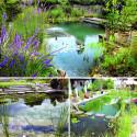 Biotop Natural Pools – Like A Billabong In Your Backyard