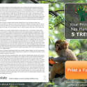Print A Forest Adds Ads To Every Page You Print With Proceeds Being Used To Plant Trees