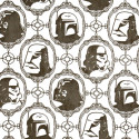 Spruce Up Your Room With Star Wars Wallpaper