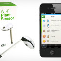 No Green Thumbs? No Problem!  This Device Takes Care Of Things For You