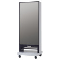 Panasonic Releases Digital Mirror For Physical Rehabilitation
