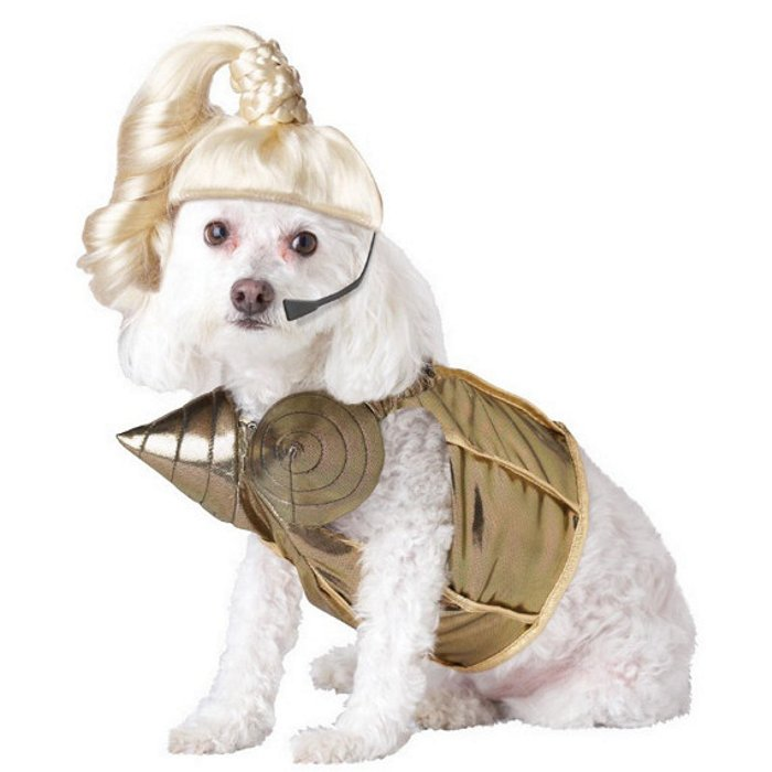 Slutty Halloween Costumes