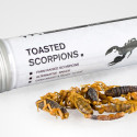 Toasted Scorpions, Anyone?