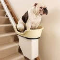 A Stairlift For Dogs