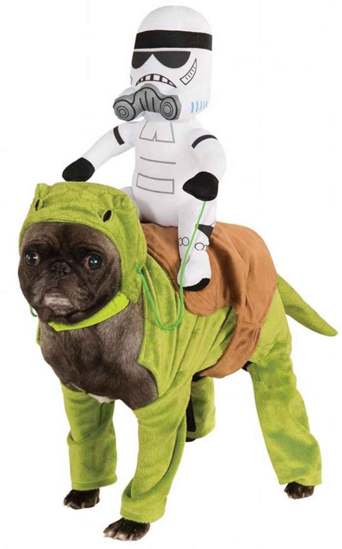 Star Wars Dog1