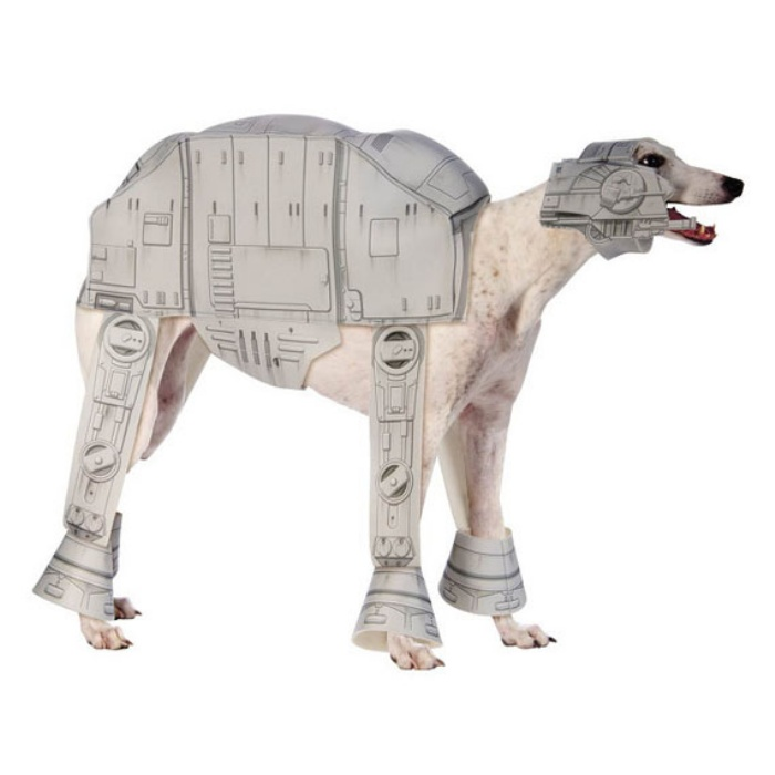 Star Wars Dog3