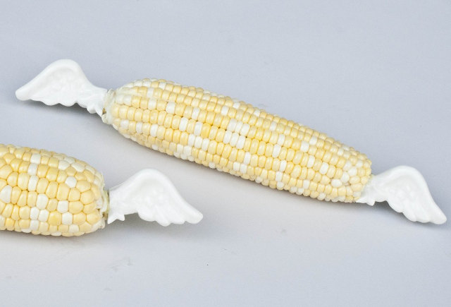winged-corn