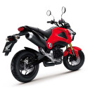 Is The Honda Grom The Moped For Grown Ups?