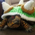 Bowser Crochet Sweater Turns Your Turtle Into Super Mario's True Nemesis