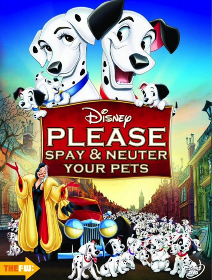 Disney Honest Titles5