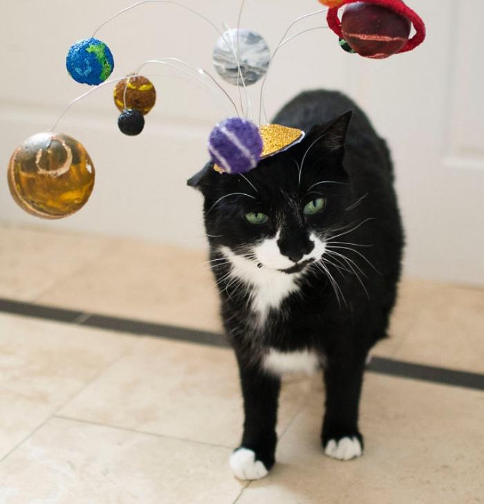 Solar System Cat Hat1