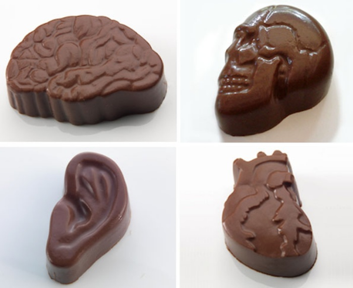 Organ Chocolate1