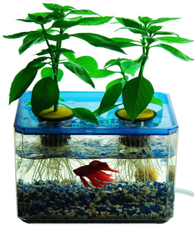 hydroponics-set-1