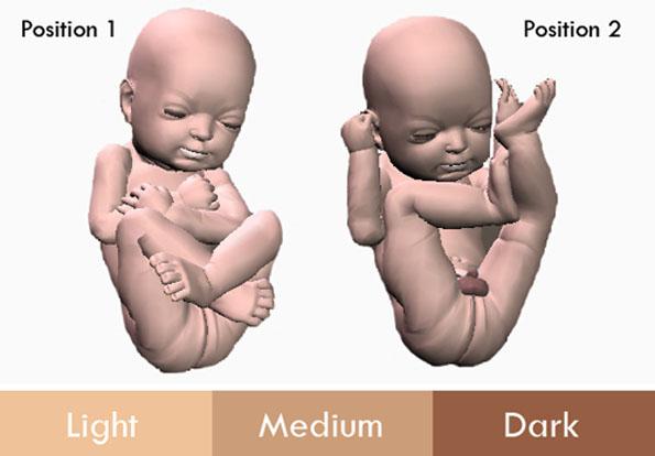 3d-printed-fetus-4