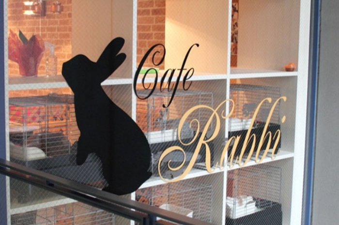 Rabbit Cafe1
