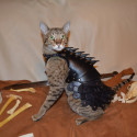 Cat Battle Armor Made From Leather
