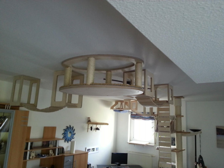 ceiling-furniture-for-cats-by-goldatze-gold-paw-1