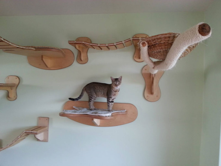 ceiling-furniture-for-cats-by-goldatze-gold-paw-10
