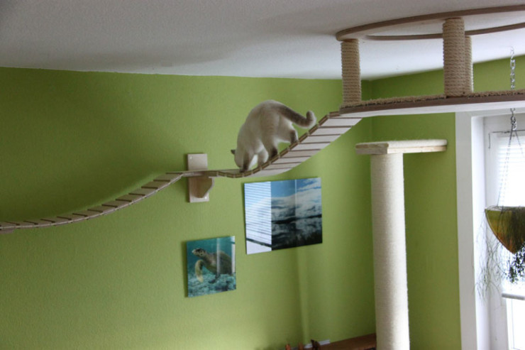 ceiling-furniture-for-cats-by-goldatze-gold-paw-16