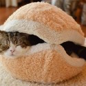 The Best Patty Ever: Cat Burger Pillow