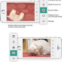 Kittyo Lets You Creep On Your Cat From The Comfort Of The Interwebs