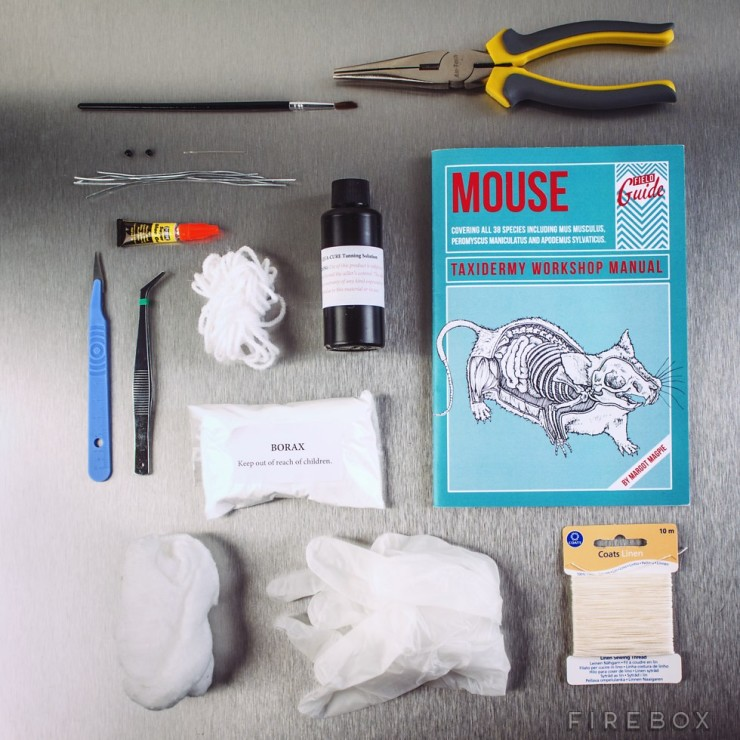 mouse-taxidermy-1