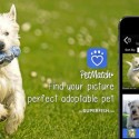 Find Pets That Look Just Like the Ones You Had Before with PetMatch