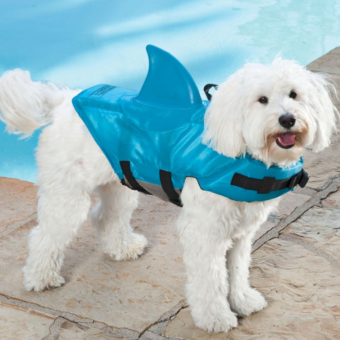 Shark Fin Life Jacket For Dogs