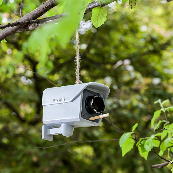 Security Camera Birdfeeder