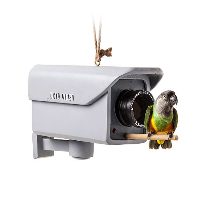 Security Camera Birdfeeder1