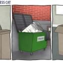 Cats Are Stupid, Yo