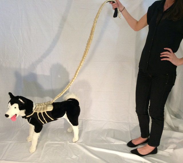 alien-facehugger-dog-leash-1