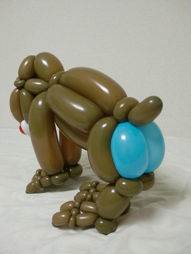 amazing-balloon-animals-46