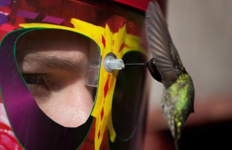 Wearable Hummingbird Feeder Mask
