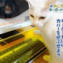 Got The Kitty Keyboard Syndrome?  Fix It With The Neko Pochi Anti-Cat Keyboard Cover