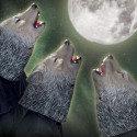 You Should Be A Wolf Howling At The Moon This Halloween
