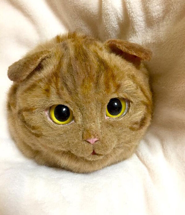 realistic-cat-bags-10