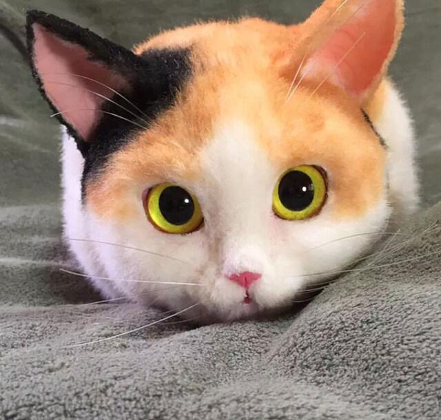 realistic-cat-bags-4