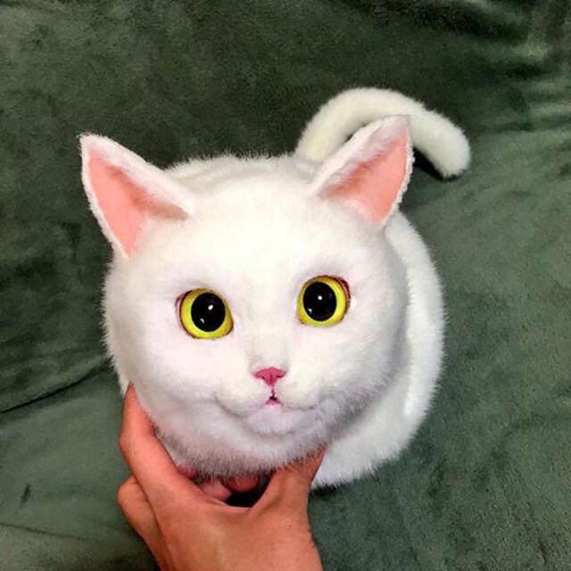 realistic-cat-bags-6