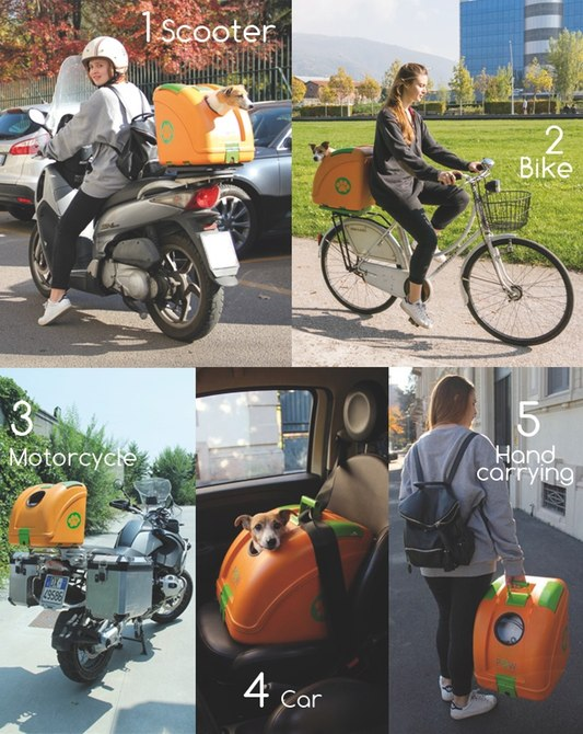 pet-on-wheels-carrier-motorcycle-bicycle-2