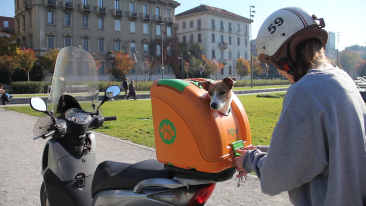 pet-on-wheels-carrier-motorcycle-bicycle-3