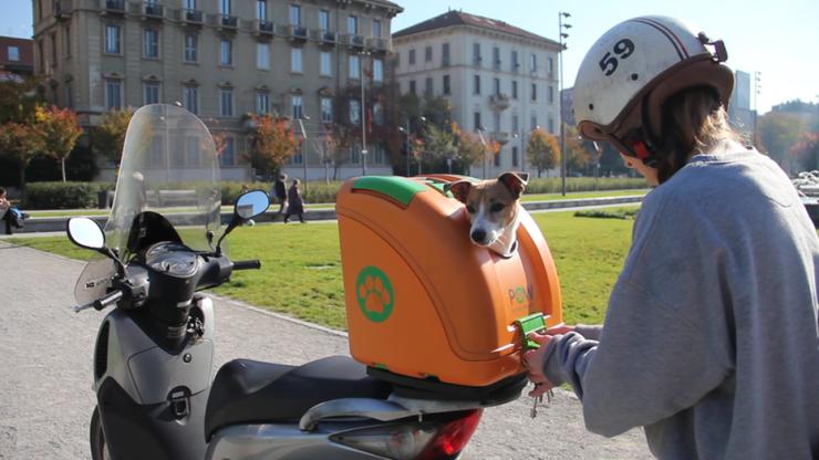 pet-on-wheels-carrier-motorcycle-bicycle-3