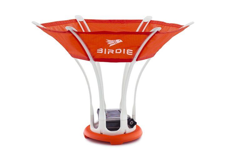 birdie-2